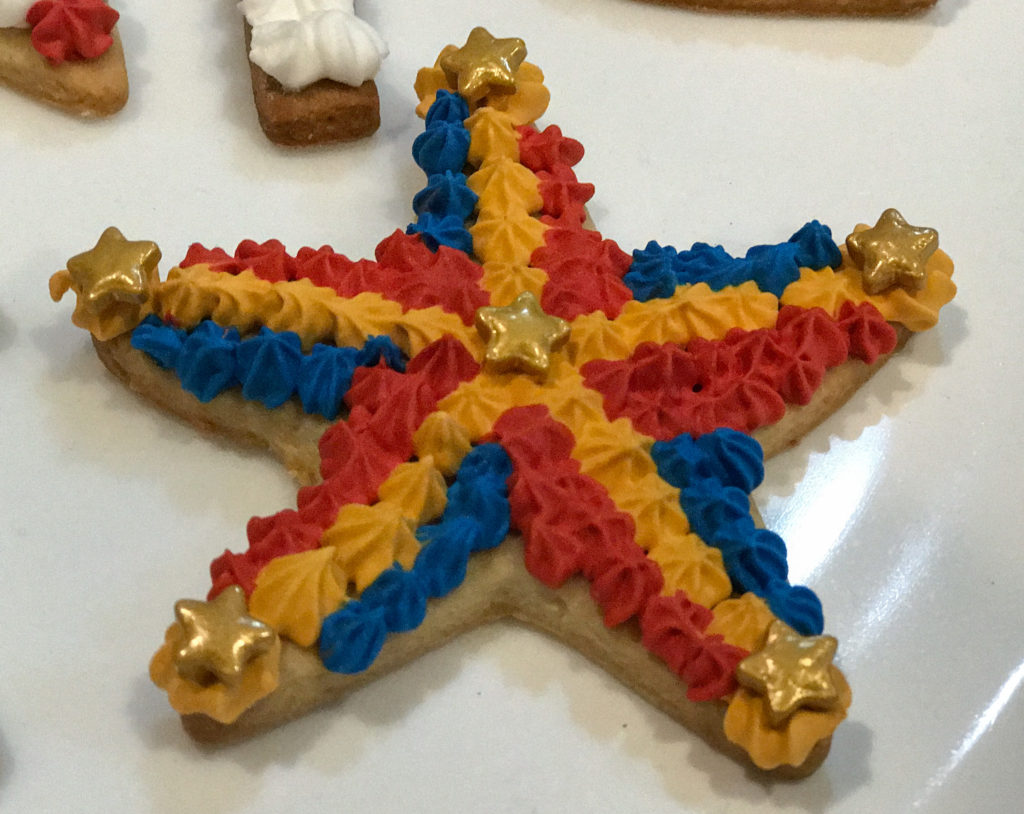 Fourth of July cookie